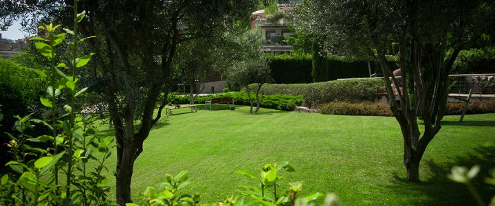 La Xerojardineria o jardineria sense aigua